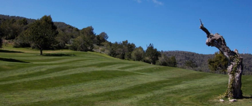 Golfbana i Andratx nära Camp de Mar Beach bostadskomplex