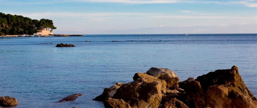 Port Vell, Mallorca