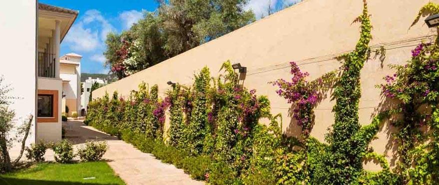 Felles svømmebasseng og hage i Camp de Mar boligkompleks, Mallorca