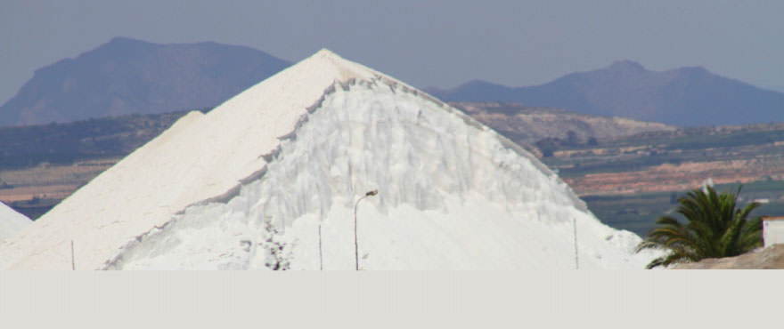 La Recoleta III Apartments, Punta Prima: Saltworks