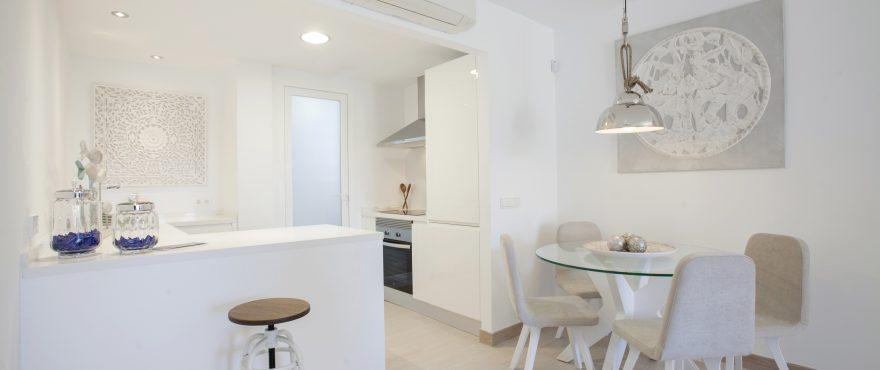 Onze woningen beschikken over gemeubelde en volledig ingerichte keukens met oven, vitrokeramische kookplaat en dampkap,