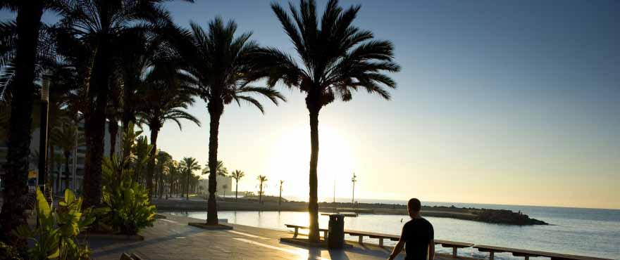 Paseo marítimo Torrevieja, Alicante, Costa Blanca