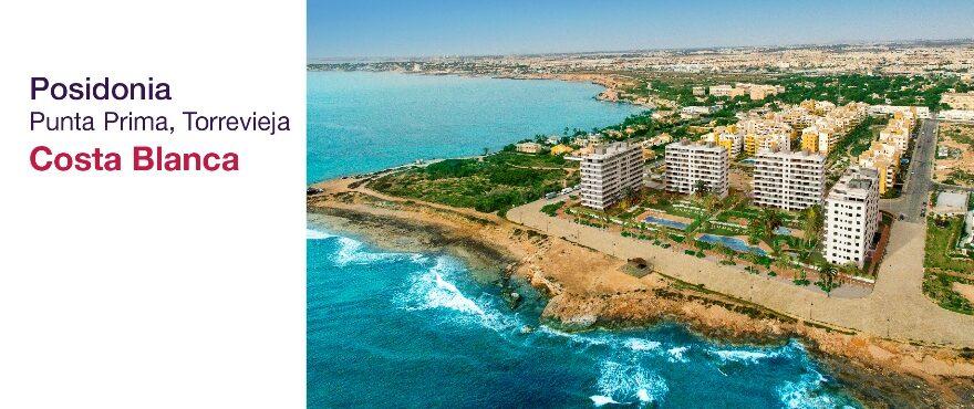 Posidonia, Punta Prima - Torrevieja (Alicante)