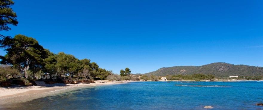 Costa de los Pinos beach